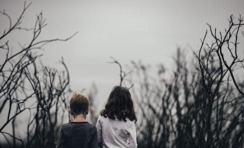 los celos fraternales y cómo gestionarlos en la familia